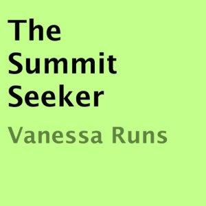 The Summit Seeker Audiobook By Vanessa Runs cover art