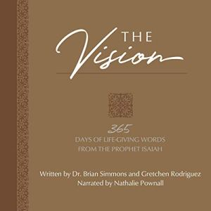 The Vision Audiobook By Brian Simmons, Gretchen Rodriguez cover art