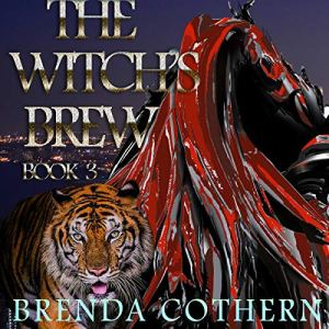 The Witch's Brew 3 Audiobook By Brenda Cothern cover art