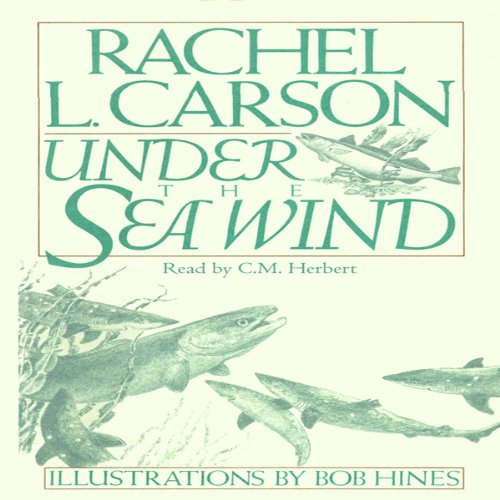 Under the Sea Wind Audiobook By Rachel L. Carson cover art