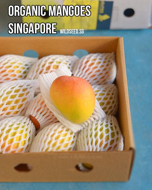 orgânicos-mangas-singapore