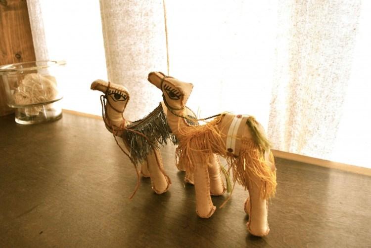 cameltoy