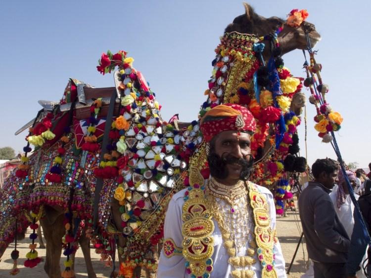 vjai and camel