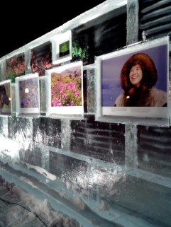 exposition-glace