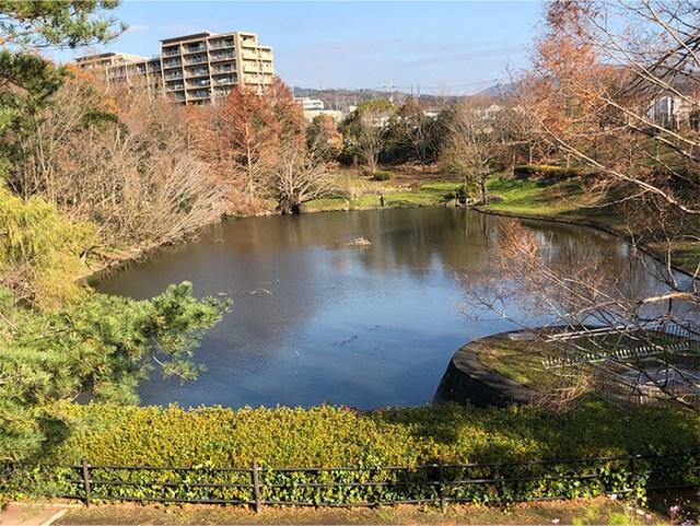 上の池公園(かみのいけ こうえん)
