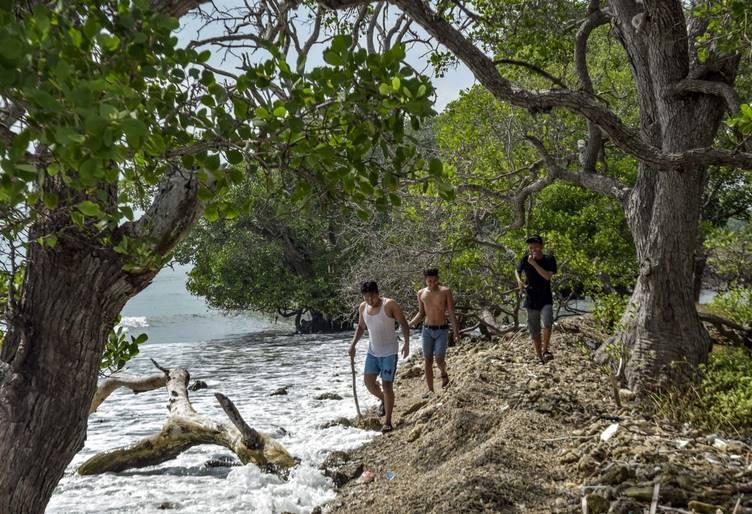 Cantik Dan Alami Pantai WGS Di Dusun Cumpleng, Kec Brondong, Kab Lamongan 2