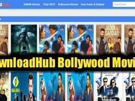 downloadhub hd bollywood movies download