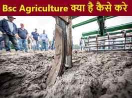 Bsc Agriculture course kya hai kaise kare