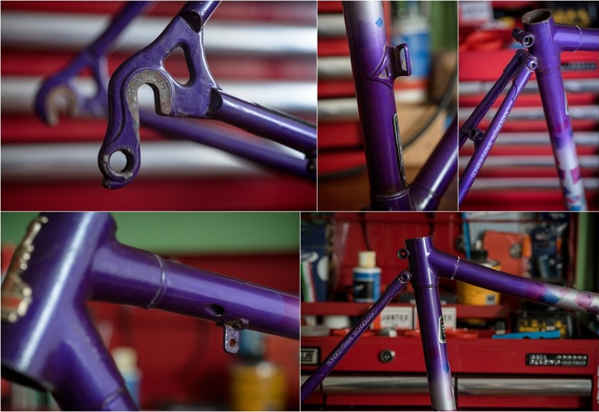 SB9529 Raleigh Special Products Division Dyna-Tech Low Profile Frame Details