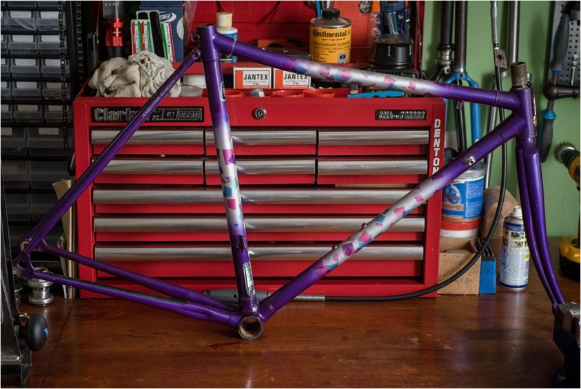 SB9529 Raleigh Special Products Division Dyna-Tech Low Profile Frame