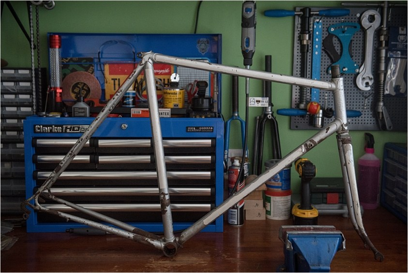 MK5 Professional Frame and Fork