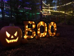 Monster Mash Glow Night @ TreeRunner Raleigh | Raleigh | North Carolina | United States