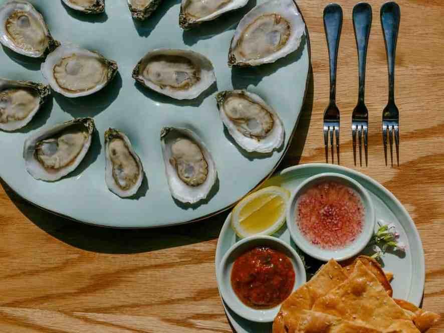 Seabird oysters PC Lindy Schoenborn