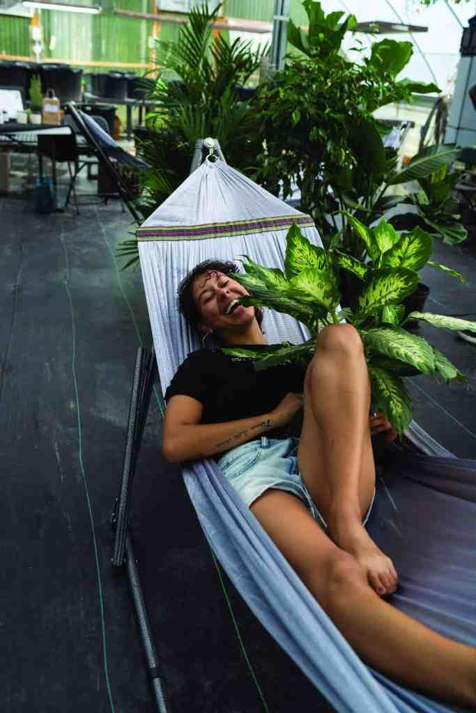 Houseplant Hippie