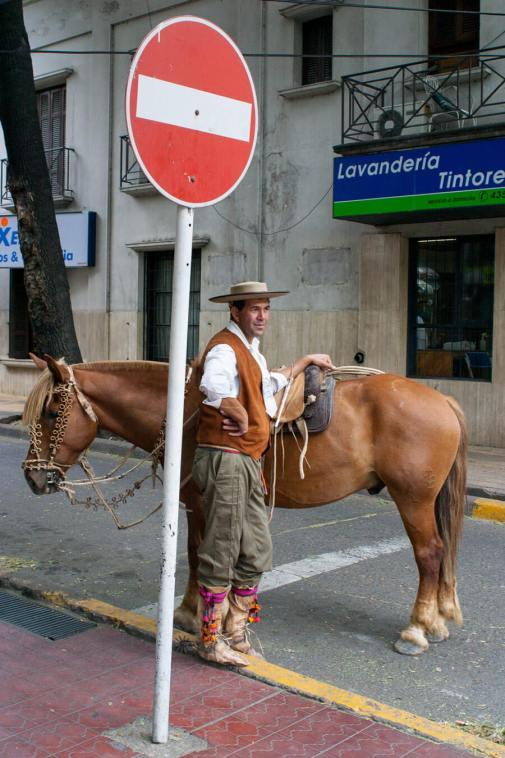 Gaucho with his horse, Mendoza, Argentina.