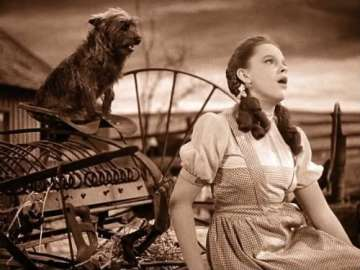 Dorothy and Toto in the Wizard of Oz movie