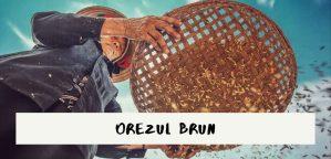 OREZUL BRUN