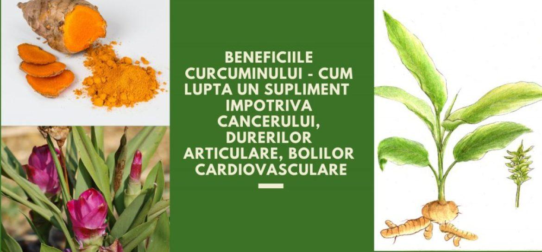 Beneficiile curcuminului - Cum lupta un supliment impotriva cancerului, durerilor articulare, bolilor cardiovasculare