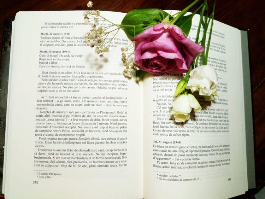 Jurnal de Mihail Sebastian – o explorare a vietii culturale, literare, politice a Bucurestiului interbelic (3)