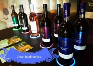 Vinuri biodinamice