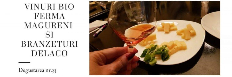 Pinot Gris si Emmentaler Delaco