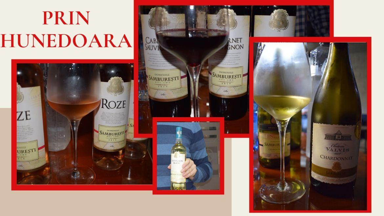 Ce gateste un chef la Lacul Cincis si cateva vinuri nobile
