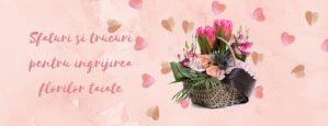 Sfaturi si trucuri pentru ingrijirea florilor taiate