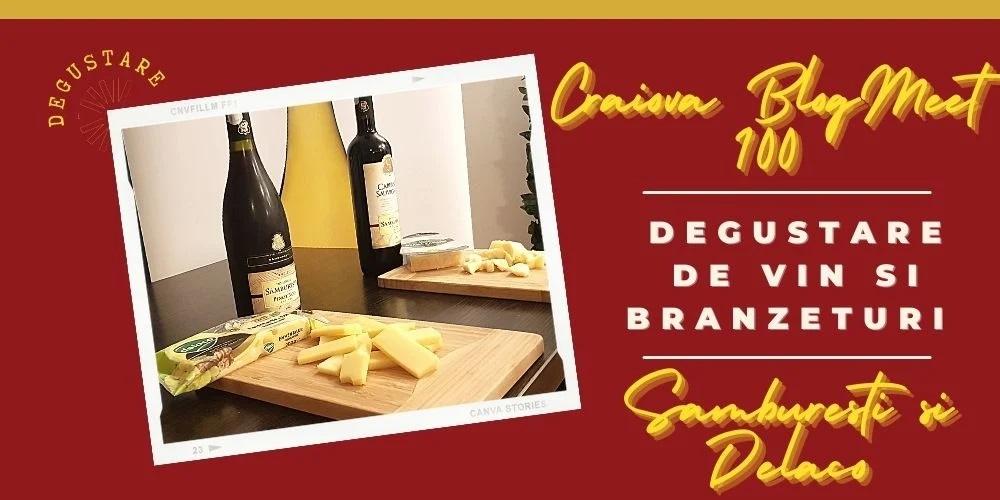 Craiova BlogMeet 100- degustare de vin si branzeturi- Samburesti si Delaco 9