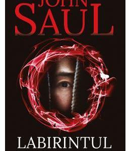 Labirintul diavolului - John Saul