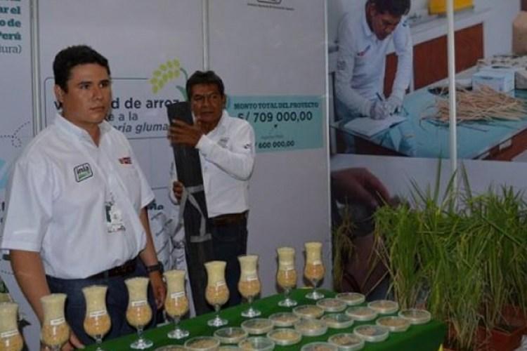 Agronova 2019 se realizará en Tarapoto | Rama Comunica