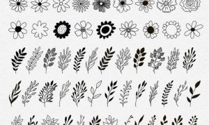 Hand Drawn floral elements by Smotrivnebo on Creative Market