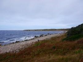Scenes from the Coastal Trail hike