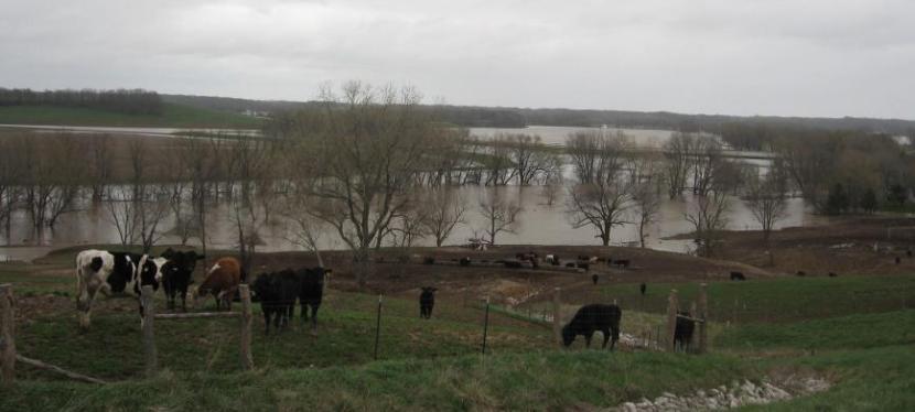 Range Roaming – Illinois 2013 – Day 5