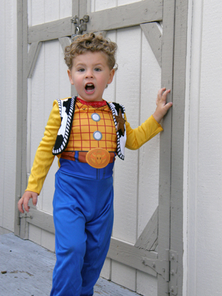 Toddler in Woody costume