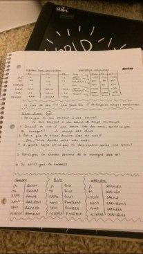 french notes