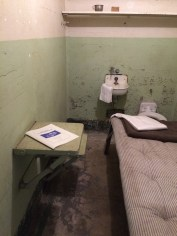 One of the cells.