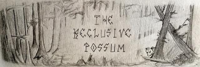 The Reclusive Possum