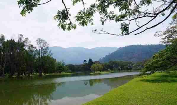 Lake Garden in Taiping Malaysia