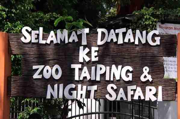 Taiping Zoo and Night Safari