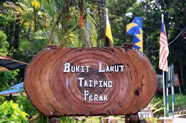 Bukit Larut in Triping