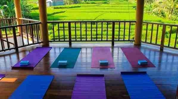 Yoga class Gili Islands