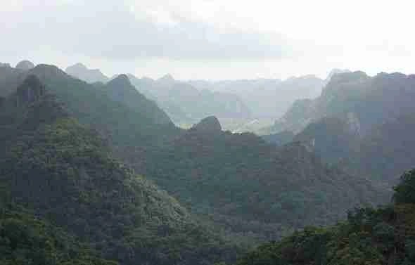 Cat Ba National Park Halong Bay Vietnam