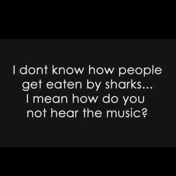 I don't know how people get eaten by sharks. Don't they hear the music?