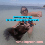 Swimming with Pigs, Royal Caribbean cruise