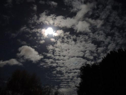 moon-nov-2