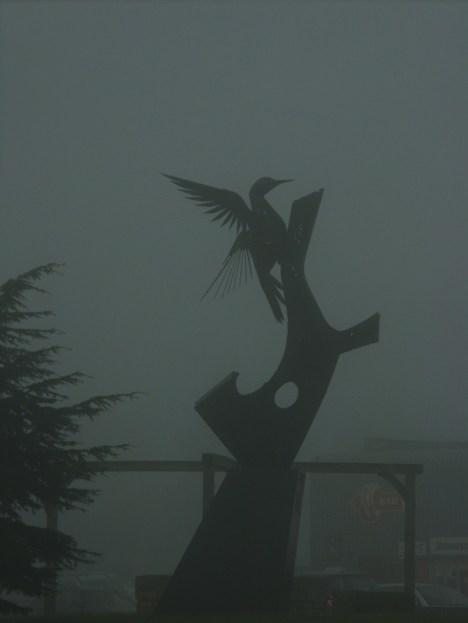 foggy-woodpecker