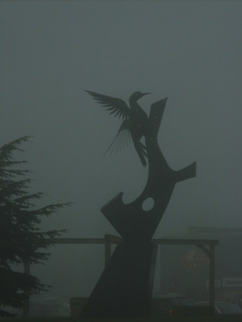 foggy-woodpecker