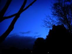 Photo of blue dawn