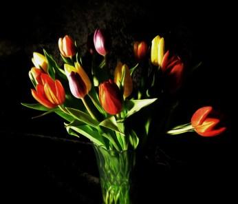 Photo of vase of tulips